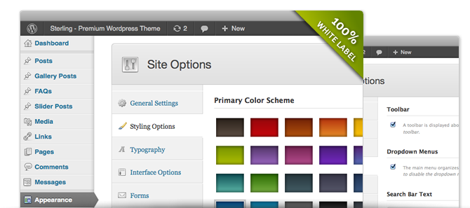 Premium WordPress Theme - Admin Options Panel